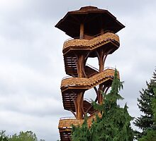 Lookout Tower from Cox Arboretum by Brian Schell
