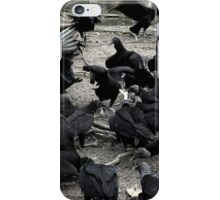 Vultures iPhone Case/Skin