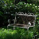 Seat in the sun by Javimage