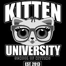 Kitten University - Grey 2 by Adamzworld