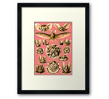 Bat Face Framed Print