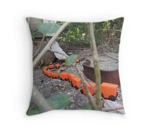 Handle Landmark Throw Pillow
