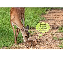 Sometimes, all we need is a little nudge from a friend! Photographic Print