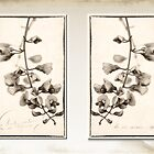 Diptych in Sepia by Cynthia Harris