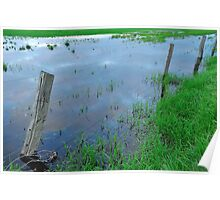 flooded fencing Poster