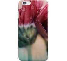 Simple Romance iPhone Case/Skin