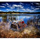Tin Dog at Devil Bend by Yanni