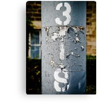 3IS in Colour Canvas Print