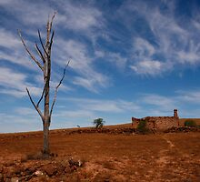 Ruined Farmhouse in the Australian Outback by jwwallace