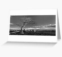 Lonesome Tree Greeting Card