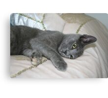 Grey Kitten Relaxed On A Bed Canvas Print