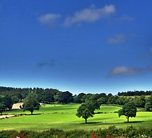 Even the Welsh have Landscapes by Epicurian