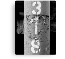 3IS black and white Canvas Print