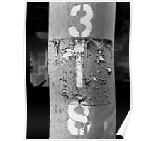 3IS black and white Poster