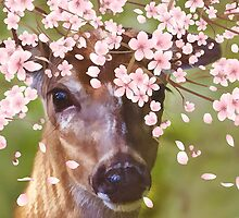 Deer Under Cherry Tree  by Delores Knowles
