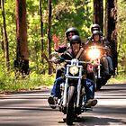 Bike Run by Clive S