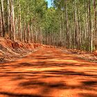 A Dirt Road Somewhere by Clive S