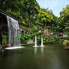 Beautiful waterfall at Monte Palace Tropical Garden, Madeira  by Zoltán Duray