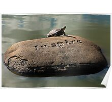 Inspire - Turtle Sunning Itself Poster