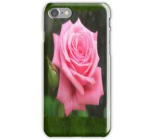 Pink Roses in Anzures 4 Blank P1F0 iPhone Case/Skin