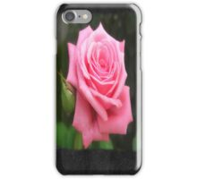 Pink Roses in Anzures 4 Blank P4F0 iPhone Case/Skin
