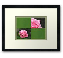 Pink Roses in Anzures 4 Blank Q5F0 Framed Print