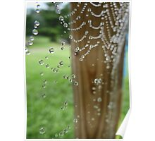 Adorned in Dew Drops Poster