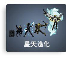 Seiya Evolution Canvas Print