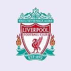 Liverpool by jizzinmypants