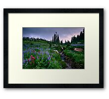 Dead Horse Creek Dawn Framed Print
