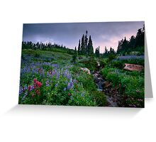 Dead Horse Creek Dawn Greeting Card