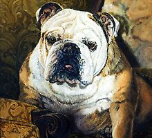 English Bulldog Dog Portrait by Oldetimemercan