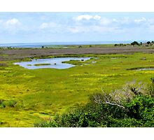Pea Island, North Carolina Photographic Print