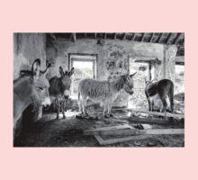 Donkeys on Blasket Baby Tee