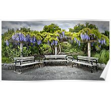 Three Benches (with Wisteria) [HDRI Panorama] Poster