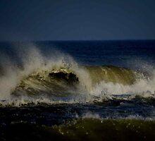 Ocean Wave by virginian