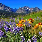 Bouquet of Wildflowers by JamesA1