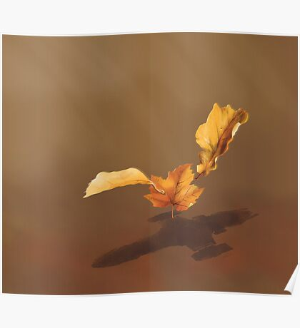 Leaf on the Wind Poster