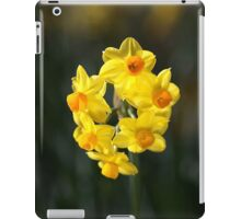 Jonquil Cluster iPad Case/Skin