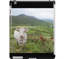 A Cow in Kerry iPad Case/Skin