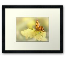 Precious Summer Gold Framed Print