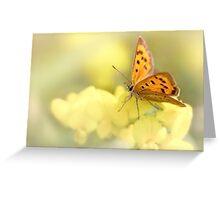 Precious Summer Gold Greeting Card