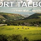 Port Talbot Postcard - Valley by digihill