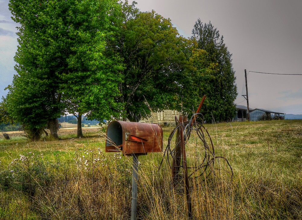 THE CHECK IS IN THE MAIL by Charles & Patricia   Harkins ~ Picture Oregon