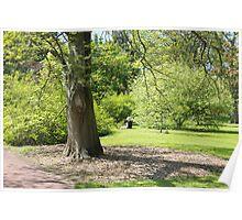 Royal Botanic Garden, Edinburgh Poster