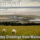 Penblwydd Hapus - Happy Birthday from Wales - The Bay by digihill