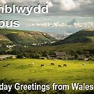 Penblwydd Hapus - Happy Birthday from Wales - Green Valley by digihill