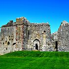 Weobley Castle, Gower, Wales by Elinor Barnes