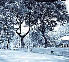 A Day in Ayala Triangle by jeekie