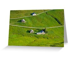 the green (die Linien der Natur) Greeting Card